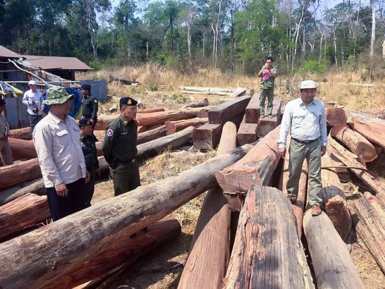 illigal_wood_found_in_mondulkiri_09_03_2016_supplied