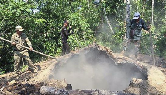 authorities_destroy_a_charcoal_kiln_31_03_2016_wilflife_alliance