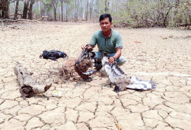 a_man_displays_the_bodies_of_two_birds_killed_by_a_poisoned_watering_hole_in_stung_trengs_sesan_district_00_04_2016_supplied