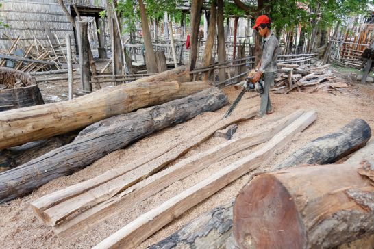 a_young_man_at_a_property_in_kratie_provonces_thmey_commune_uses_a_chainsaw_last_month_to_cut_logs_into_posts_to_be_used_on_pepper_plantations_30_05_2016_pha_lina