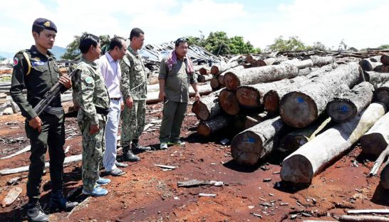 authorities_inspect_lumber_yesterday_in_kampong_speu_province_during_a_raid_on_a_companys_timber_yard_05_10_2016_supplied