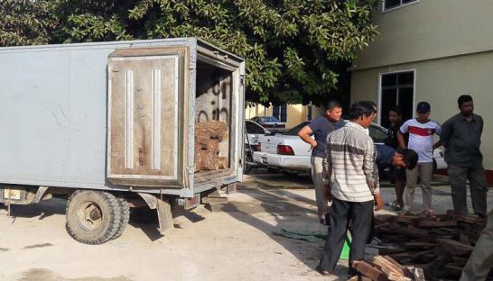 people_unload_roseswood_from_a_truck_that_was_abandon_by_its_occupants_in_takhmao_earlier_this_week_after_a_brief_chase_by_authorities_06_11_2016_supplied