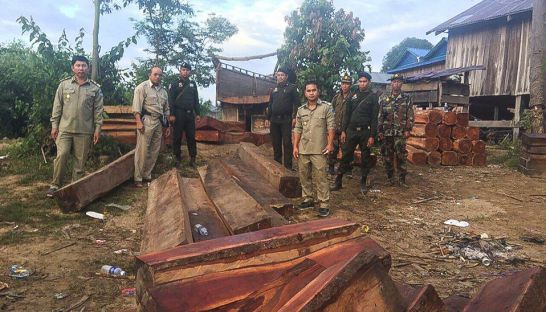 1_authorities_stand_beside_piles_of_first_grade_timber_seized_in_ratanakiri_province_late_last_week_08_12_2016_supplied