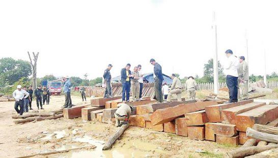 timber-trade