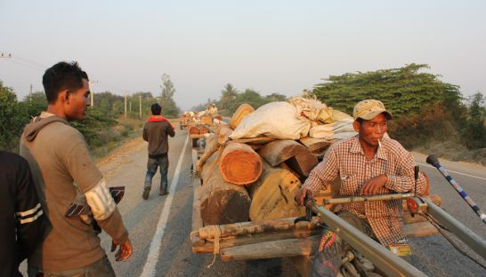 Loggers haul timber east on National Road 44 in Kampong Speu province on Saturday. Shaun Turton